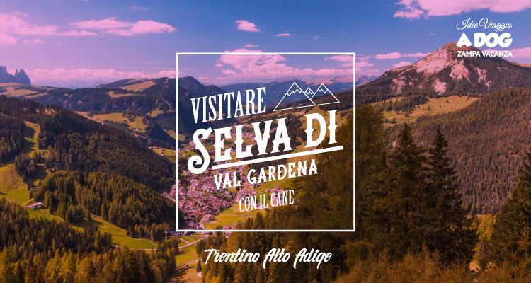 Visitare Selva di Val Gardena con il cane   Zampa Vacanza